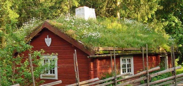 Les avanatages du toit végétal