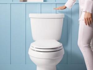 les types de toilette portail maison