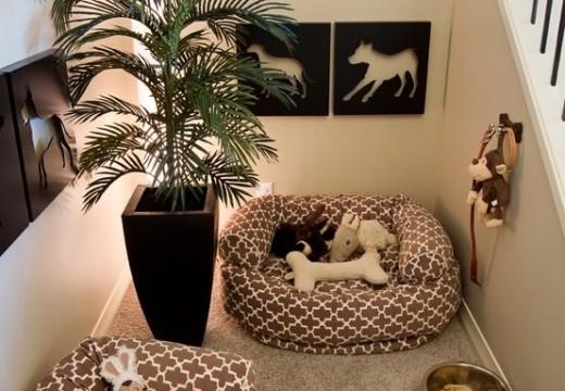 Créer un espace déco pour son animal