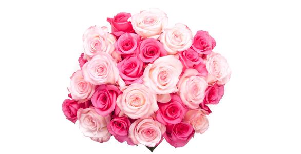 Mood board des plus beaux bouquets d'hiver