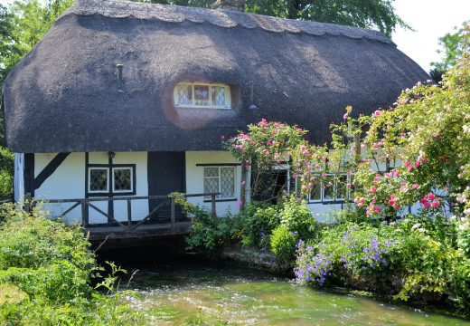 Créer un jardin anglais sur son terrain