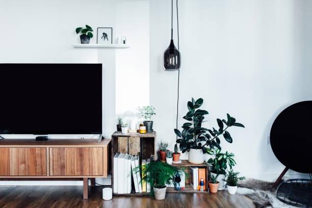 Salon avec TV écran plat et deux caisses en bois, style industriel, remplies de livres