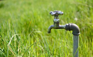 Un robinet en métal dans un jardin à l'herbe verte pour arroser