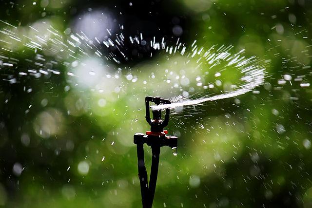 irrigation-automatique